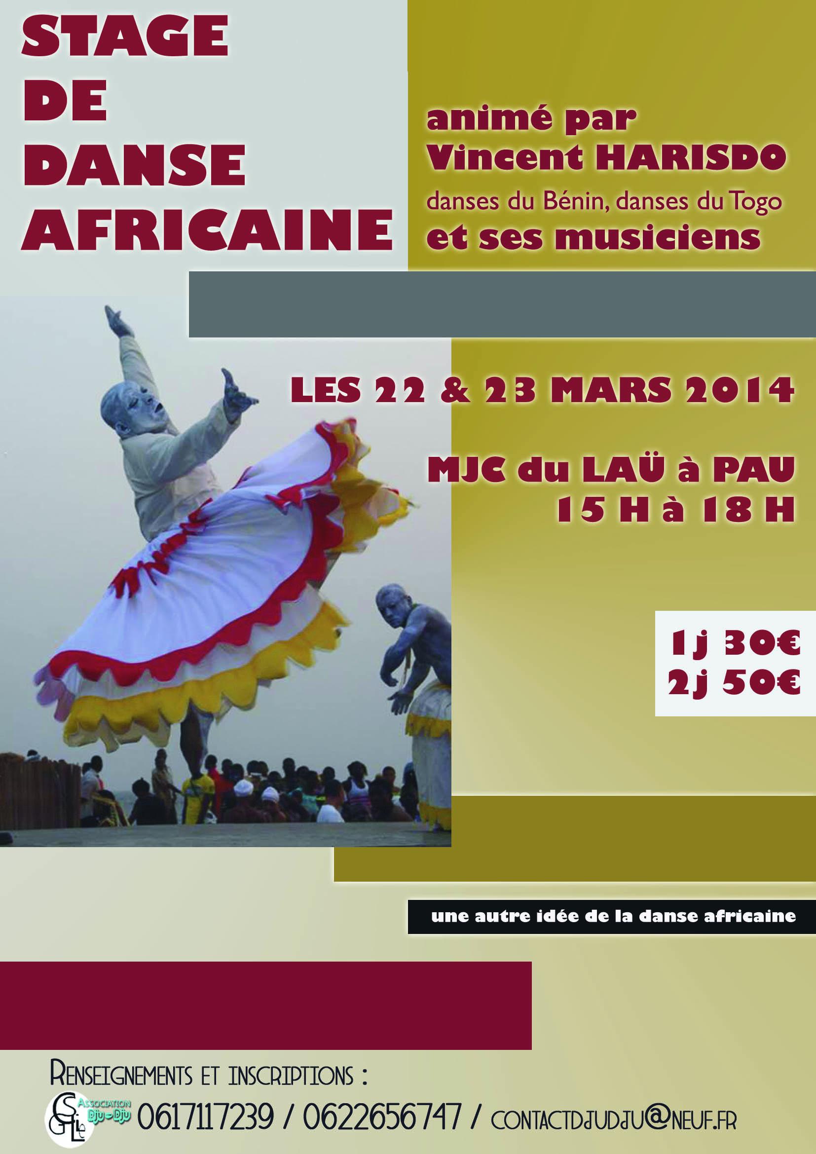 Stage de danse africaine avec Vincent Harisdo