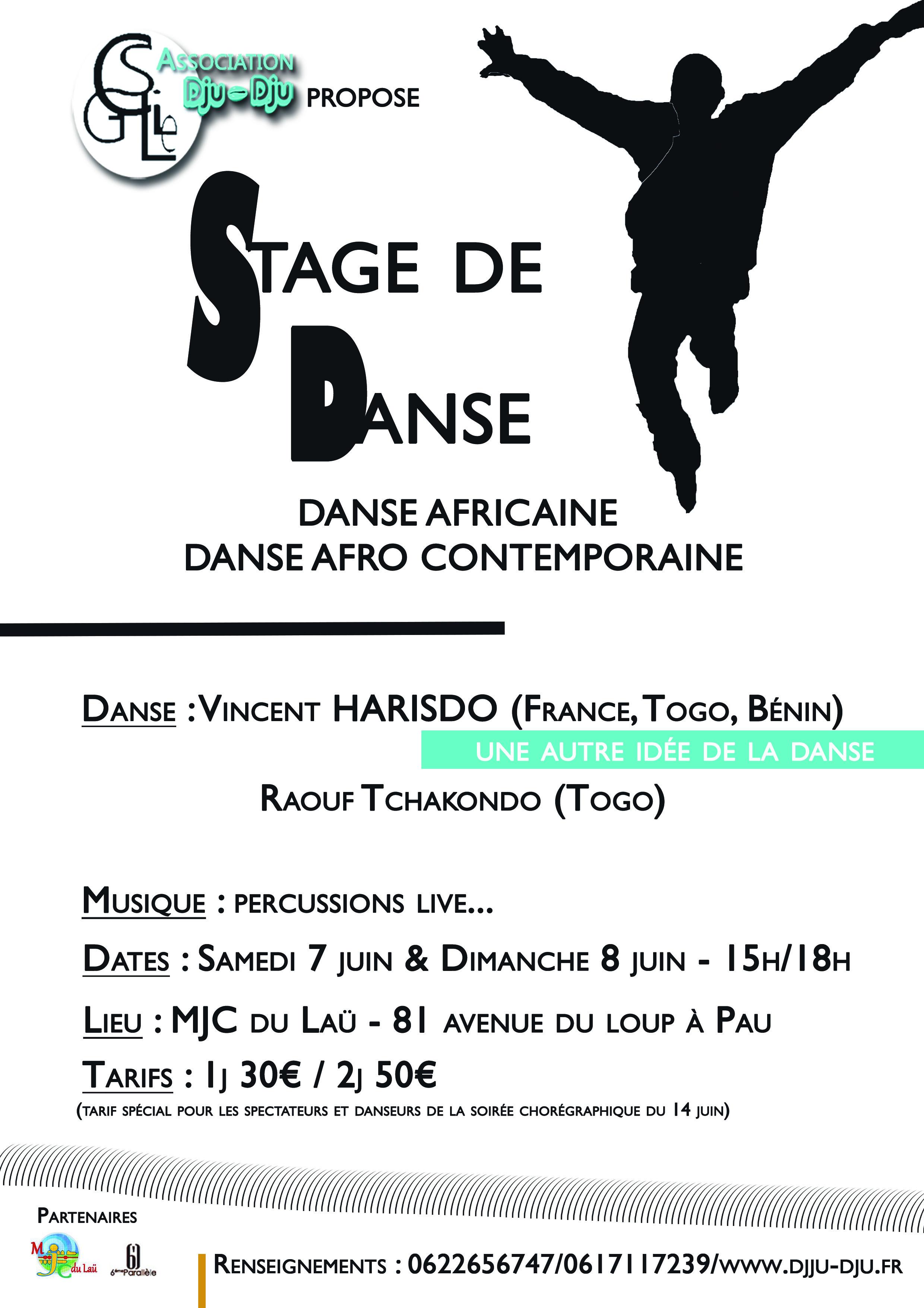 Stage de danse Vincent Harisdo & Raouf Tchakondo - Une autre idée de la danse