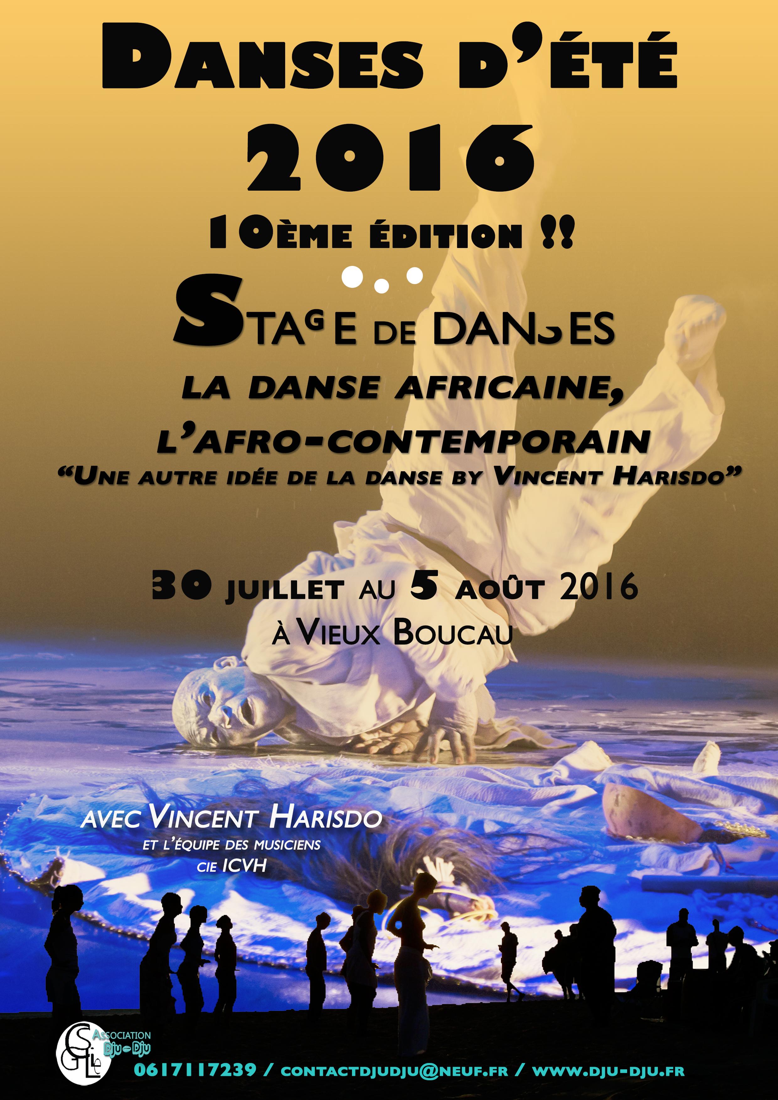 """Danses d'été 2016, la 10ème : """"une autre idée de la danse by V.H"""""""