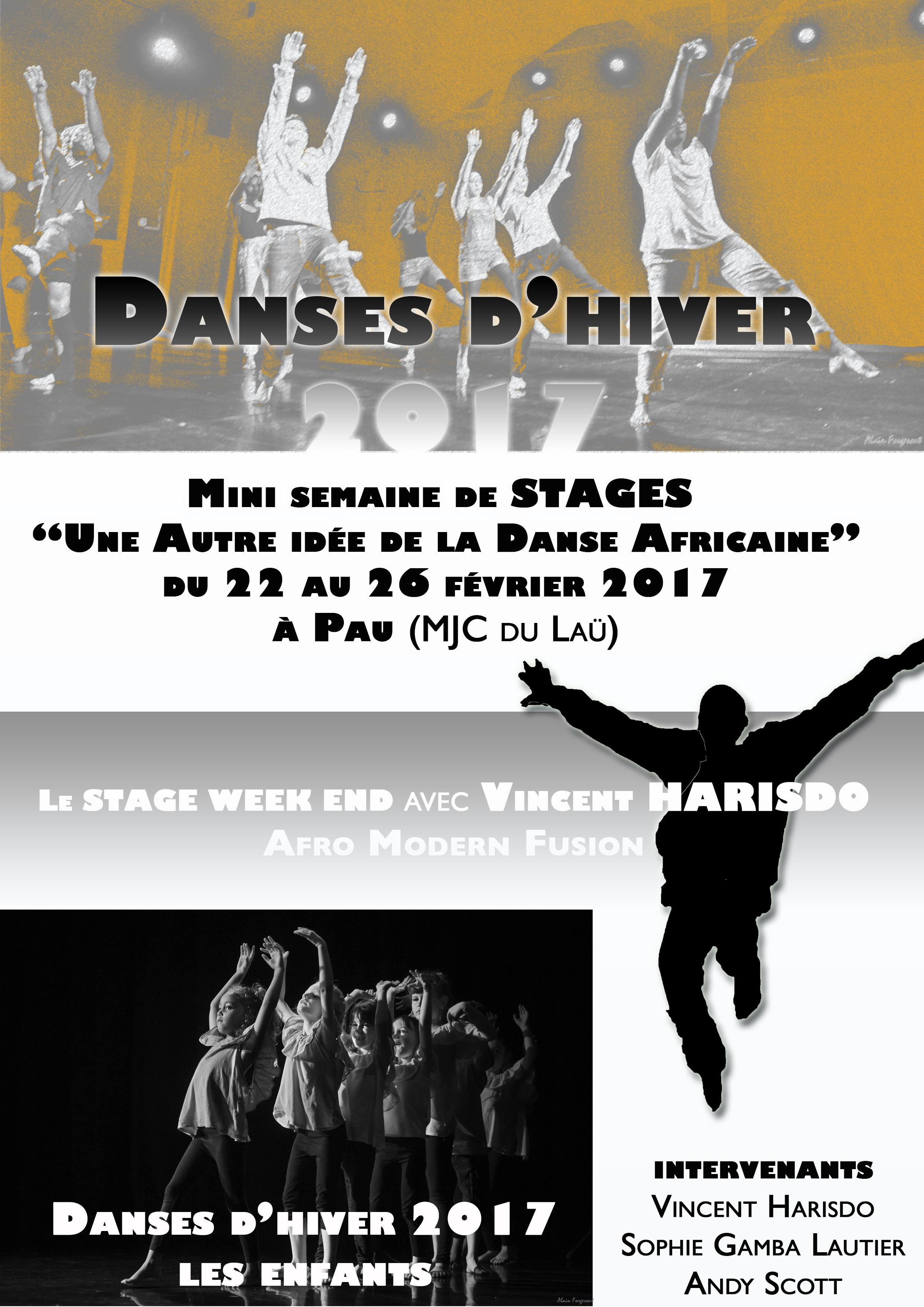 Danses d'hiver 2017
