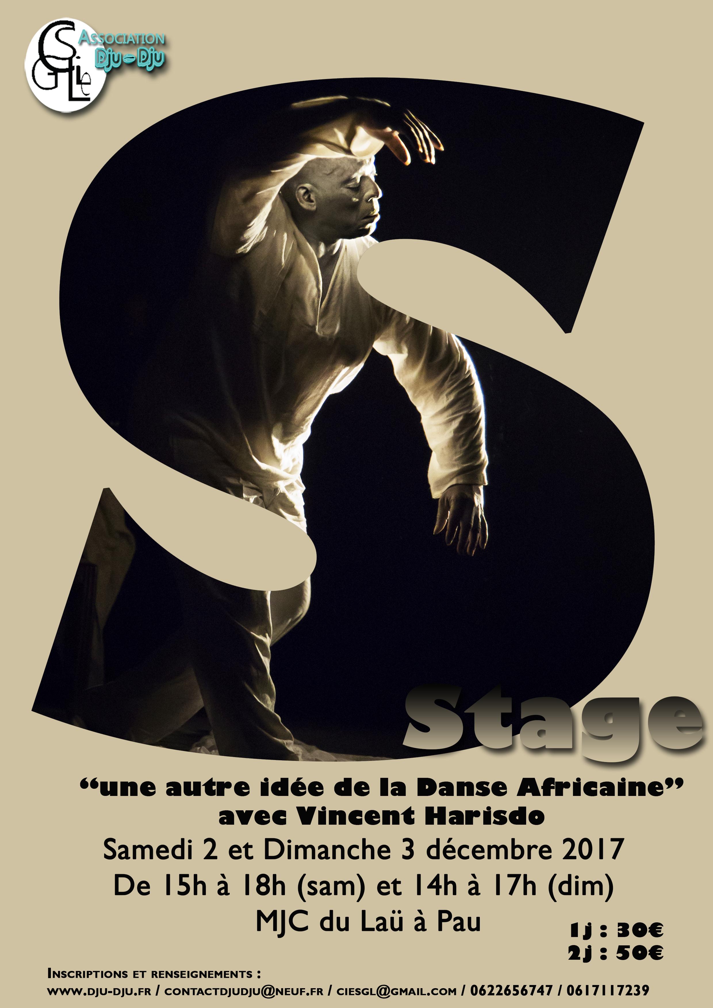"""Stage """"Une Autre Idée de la Danse Africaine"""" avec V.Harisdo 2 & 3 déc."""